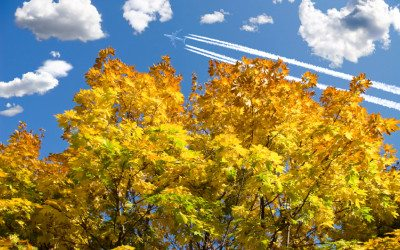 The Best Places to Fly To in Fall